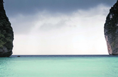 پاکسازی سواحل بندرعباس